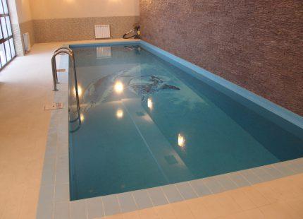 Отделка бассейна - панно с дельфинами, бассейн построен в Екатеринбурге